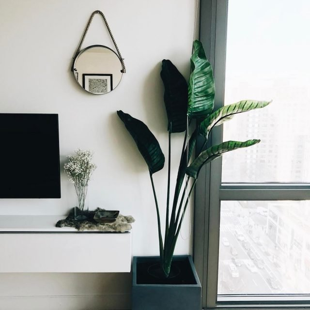 TPO home nyc Ive been redecorating my apartment for thehellip